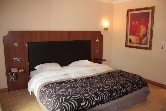Georges Blanc Parc & Spa : chambre