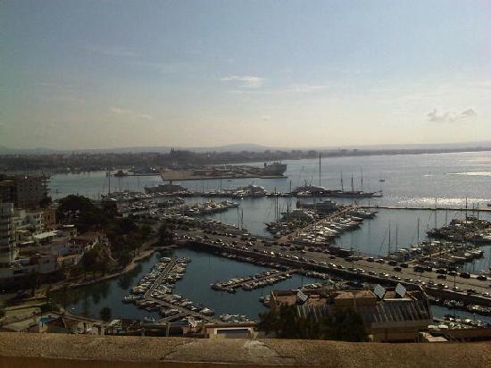 Catalonia Majorica Hotel: Vista de día desde la terraza de la habitación