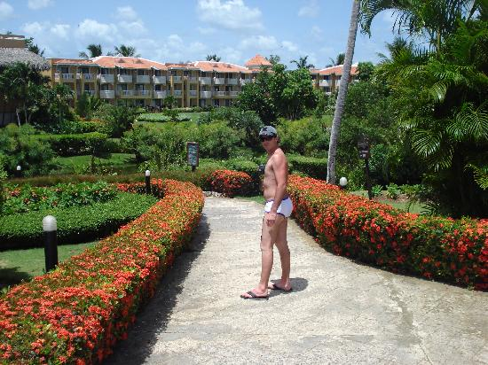 Viva Wyndham Dominicus Palace - An All-Inclusive Resort: Hotel
