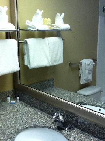 BEST WESTERN Evans Hotel: bathroom