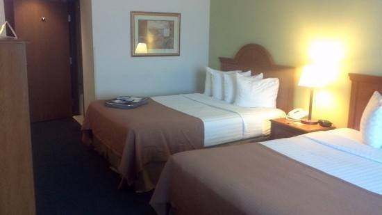 BEST WESTERN Evans Hotel: room