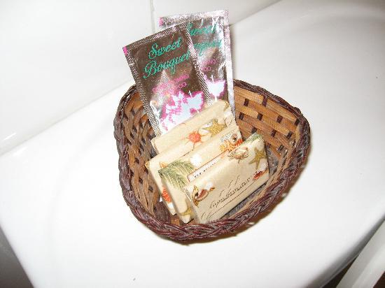 Piarco International Hotel: soap/shampoo