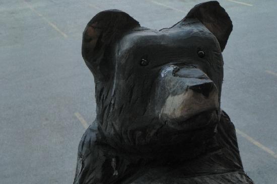 """Best Western Plus Kelly Inn & Suites : """"bear"""" peaking in our window"""