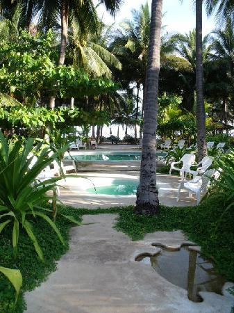 La Tortuga Verde: Swimming Pool out to the Beach