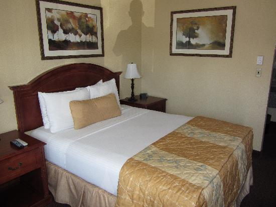The Dalles Inn: Queen Bed