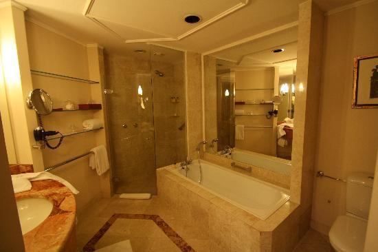 Hyatt Regency Belgrade: bath