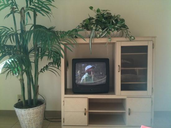 Aquarius Beach Tower: tv in the oceanview room