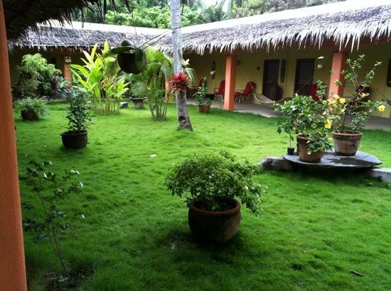 Hibiscus Garden Inn: le jardin devant les chambres