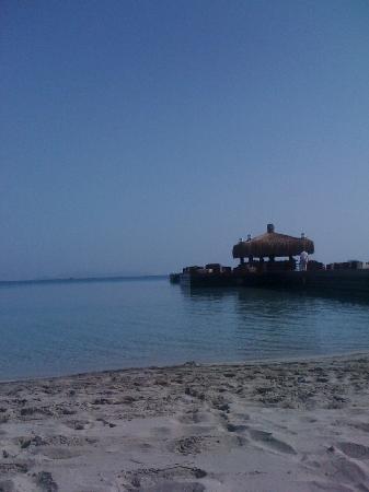 Sheraton Cesme Hotel Resort & Spa: Deniz süper