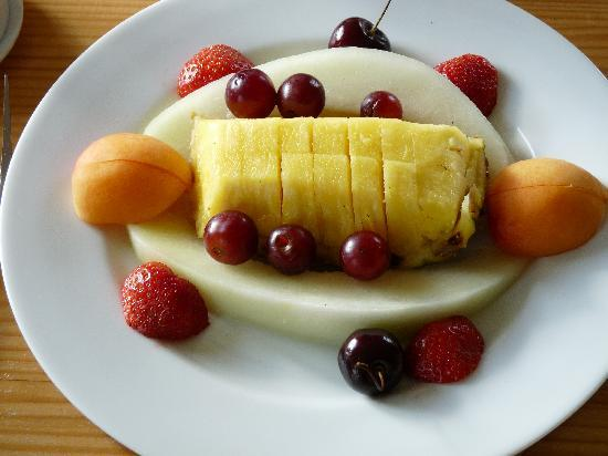 Langton Brook Farm Bed and Breakfast: The fruit plate