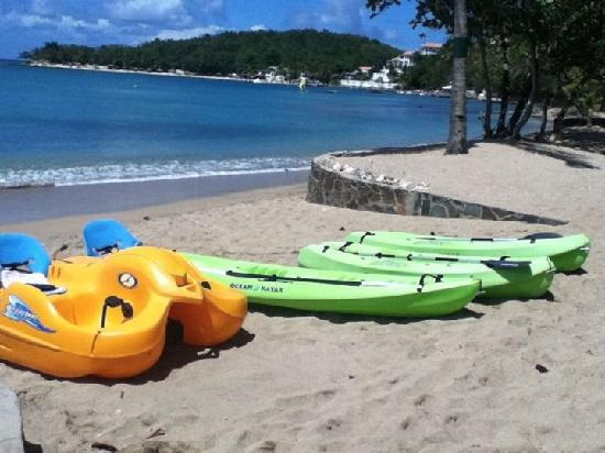 East Winds: Kayaks on the beach.