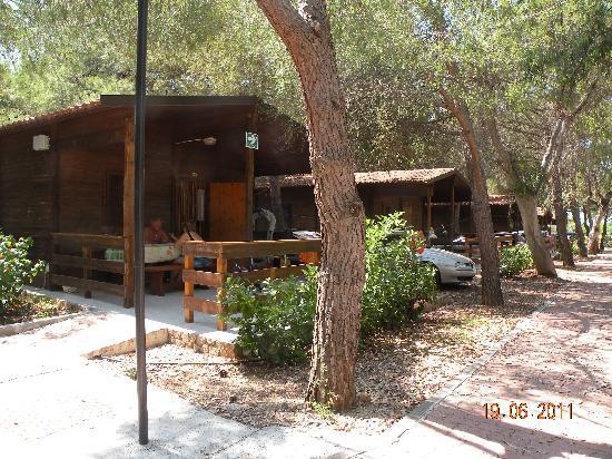 Siesta Camping Villaggio Hotel: bungalow