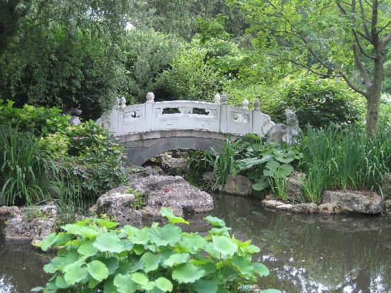 Paper Lanterns During Chinese Heritage Weekend Picture Of Missouri Botanical Garden Saint