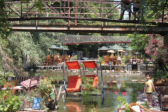 Adrasan River Hotel: Otelden Görünüm-1