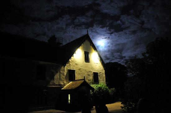 South Elmham Hall Bed & Breakfast: The hall at night