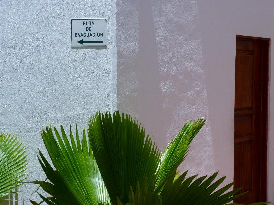 Terracaribe Hotel: In the courtyard