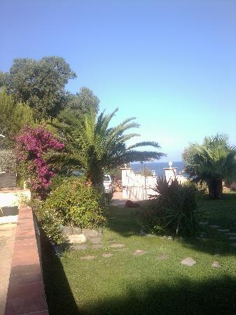 Villa Les Glycines : giardino