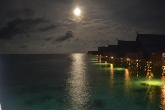 Sipadan Kapalai Dive Resort: Last night