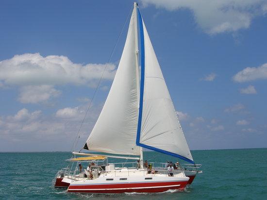 Captain Bryan's Sail and Snorkle Tours
