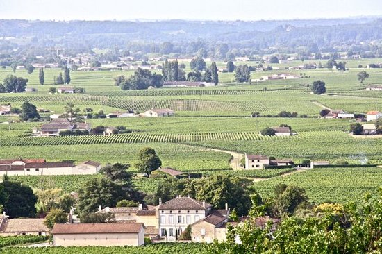 Decanter Tours: Bordeaux landscape