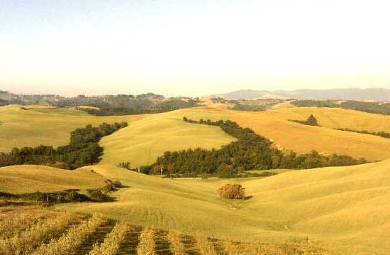 Agrihotel Il Palagetto: vista sulle colline