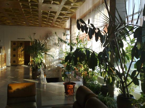 Tourist Complex Russia: Tropical plants in the lobby of the Hotel Rossiya help create a pleasant atmosphere