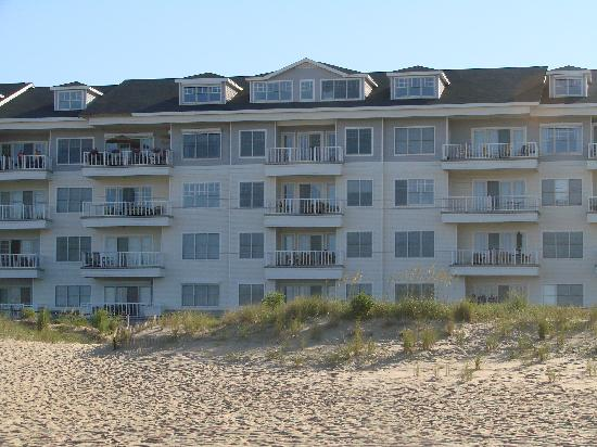 Sandbridge Dunes: View from the beach; just across the street.