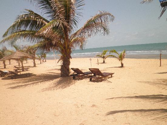 Kololi Beach Club: Beach