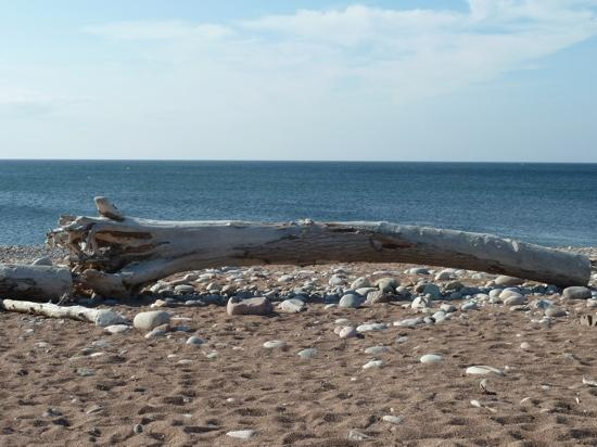Cabot Trail Hostel: beach 10 min walk from the hostel