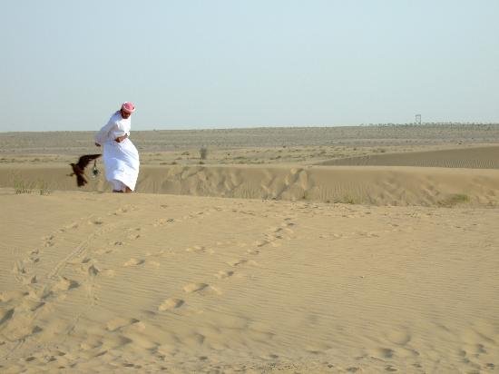 Bab Al Shams Desert Resort & Spa: falcon show, complimentary for hotel guest