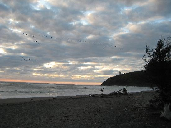 Cape Disappointment State Park: Beach at sunset