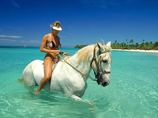 Coxen Hole, Honduras : Horse back riding