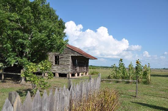 Laura Plantation: Louisiana's Creole Heritage Site: Slave house