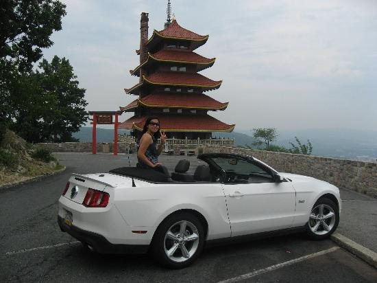 Car Rental Places In Reading Pa