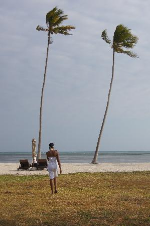 The Residence Zanzibar: walking from my villa to the beach