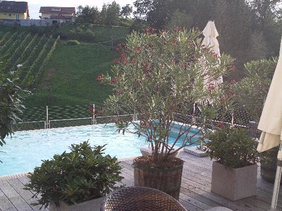 Gut Poessnitzberg : piscina