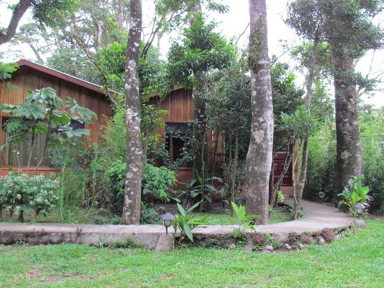 Monteverde Villa Lodge: Cabins view