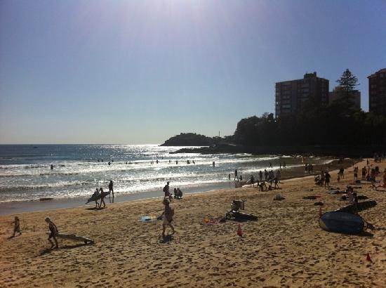 Ocean Basket Shelly Beach