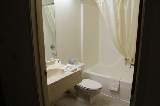 Microtel Inn & Suites by Wyndham Fond Du Lac: Standard Room - Bath