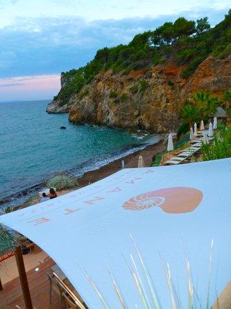 Hotels Near Amante Beach Club Ibiza