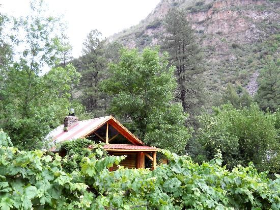 Orchard Canyon on Oak Creek: Norah cabin. LOVED IT!