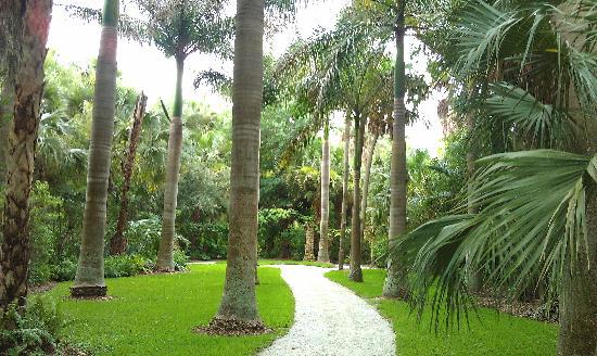 Mckee History Picture Of Mckee Botanical Garden Vero Beach Tripadvisor