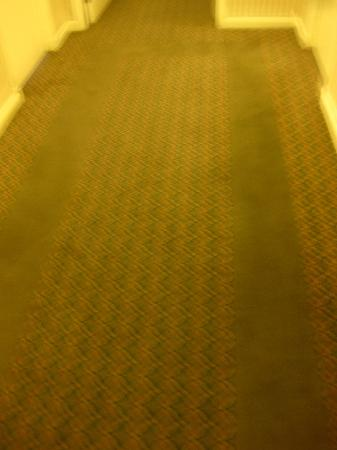 Westmark Baranof Hotel: Just to document my carpet comment...