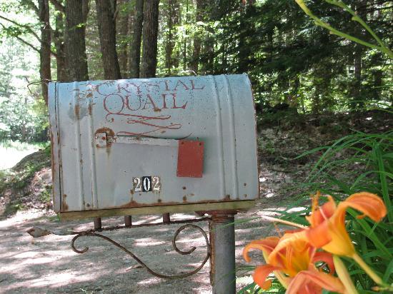 The Crystal Quail: Keep an eye open for the mailbox!