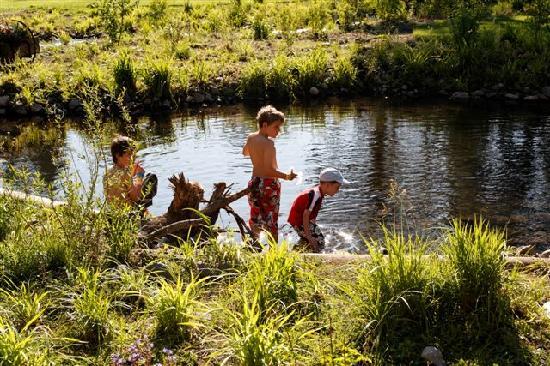 Lake Creek Lodge: Boy Catching Crawdads in Lake Creek