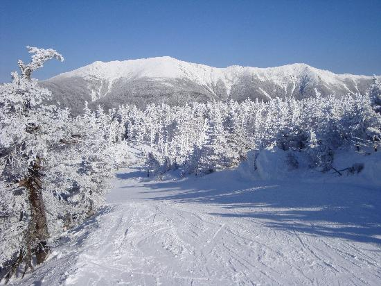 Image result for cannon mountain in snow new hampshire