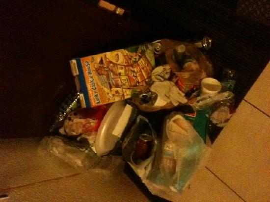 Knights Inn and Suites Virginia Beach VA: trash for days