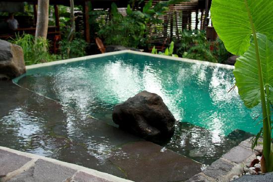 Jicaro Island Ecolodge Granada: Infinity pool