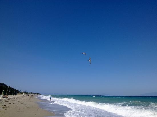Possidi Holidays Hotel : beach