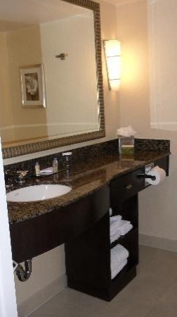 DoubleTree by Hilton Orange County Airport: sink/counter